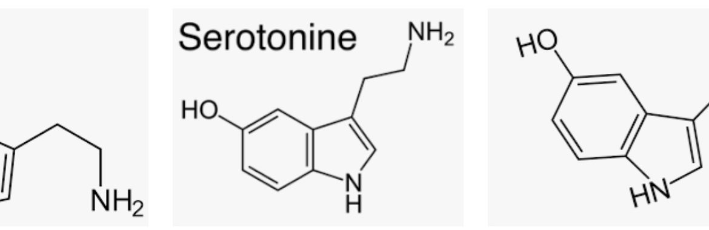 alles rondom serotonine